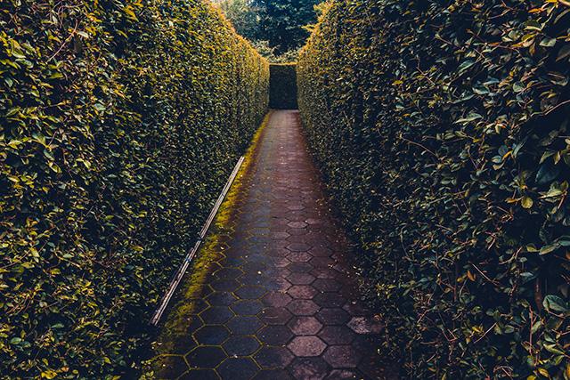 Droom betekenis van een labyrint