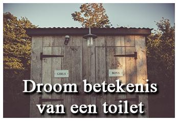Droom betekenis van een toilet