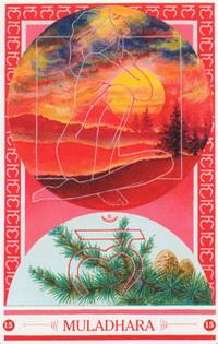 Medicijnkaart Natuurbeleving van Muladhara