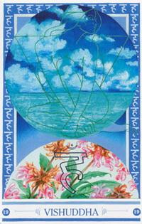 Medicijnkaart Natuurbeleving van Vishuddha
