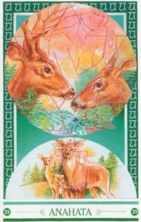 Chakra kaart Hert van Anahata