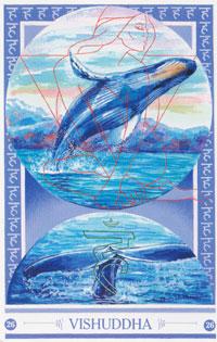 Medicijnkaart Walvis van Vishuddha