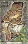 Dieren orakelkaart Aardedraak (draig-talmh)