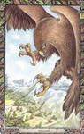 Dieren orakelkaart De Adelaar (Iolair)