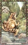 Dieren orakelkaart De Kikker (losgann)