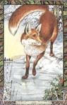 Dieren orakelkaart De Vos (Sionnach)