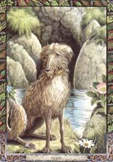 Dieren orakelkaart Hond (Cu)