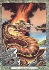 Dieren orakelkaart Vuurdraak (Draig-teine)
