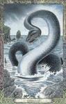 Dieren orakelkaart Waterdraak (Draig-uisge)